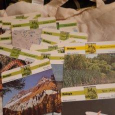 Trading Cards: 150 FICHAS ,ESTUDIOS ZOOLÓGICO, ECOLOGÍA, EDICIONES RECONTE. Lote 275167288