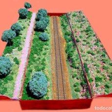 Trenes Escala: DIORAMA PARA EXPONER Y FOTOGRAFIAR TRENES. Lote 132105118