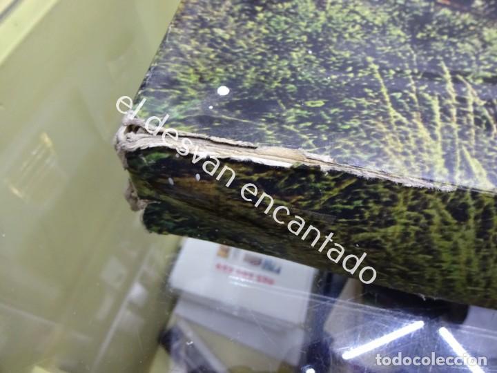 Trenes Escala: Antiguo tren LIMA escala H0 en caja original. VER FOTOS - Foto 6 - 183471195