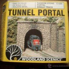 Trenes Escala: TUNEL HO. Lote 48709424