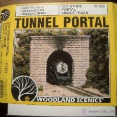Trenes Escala: TUNEL HO. Lote 48709446