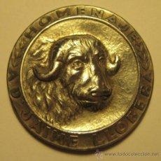 Trofeos y medallas: MEDALLA HOMENAJE AD JAIME LLOBERA. PLATA. DIÁMETRO 4 CM. PESO: 15 GR. Lote 35953216