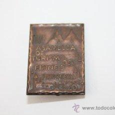 Trofeos y medallas: PIN068 INSIGNIA CONMEMORATIVA DE LA III ASAMBLEA DEL TURISMO DEL PIRINEO. BRONCE. GERONA, 1969. Lote 37781612