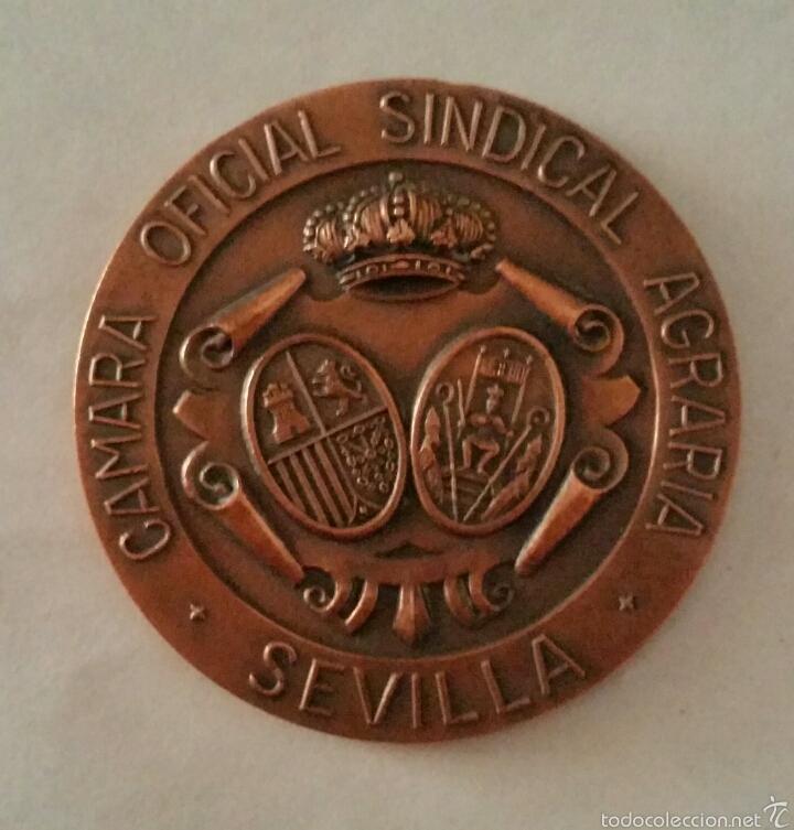 MEDALLA CONMEMORATÍVA DE LA CAMARA AGRARIA (SEVILLA). (Numismática - Medallería - Trofeos y Conmemorativas)