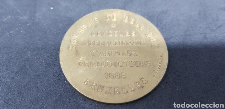 Trofeos y medallas: medalla - concurso d,animaux reproducteurs 1888 - bruselas - belgica - car126 - Foto 2 - 140048382