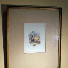 Varios objetos de Arte: PAREJA DE CUADROS . Lote 34389619