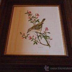 Varios objetos de Arte: CUADRO CON PINTURA ESMALTADA. . Lote 37431195