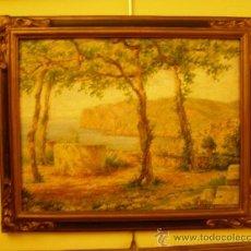 Varios objetos de Arte: CUADRO. Lote 38130957