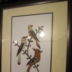 Varios objetos de Arte: ORIGINAL CUADRO DE PÁJAROS HECHOS CON PLUMAS. FIRMADO. MEDIDA: 45 X 55 CMS.. Lote 38967493