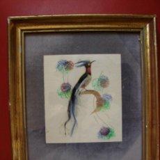 Varios objetos de Arte: ANTIGUO CUADRO CON AVE HECHO DE PLUMAS NATURALES. Lote 40038311