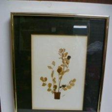 Varios objetos de Arte: UN CUADRO DE PLANTA DISECADA, FIRMADA DE J. ESTEVEZ DE 23,5 X 40,5 CM.. Lote 40826554