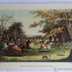 Varios objetos de Arte: CUADRO INGLES, CAZA REAL EN EL PARQUE WINDSOR, SIN MARCO MEDIDAS 39,5 X 29,5 CM . Lote 43813454