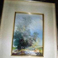 Varios objetos de Arte: INTERESANTISIMA PINTURA ANTIGUA FIRMADA MEDIDAS 24 X 30 CMS MARCO Y PASPATOUS ALOS 70 ?. Lote 44434512