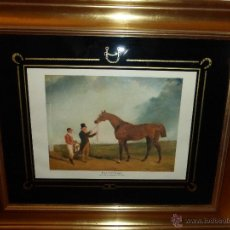 Varios objetos de Arte: LAMINA INGLESA. ABRAHAM COOPER. PLENIPOTENTARY. Lote 45794289