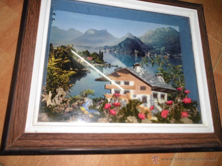 ANTIGUO CUADRO VITRINA CON PLANTAS Y CASERON PLASTICO IDEAL RESTAURANT O CASA RURAL (Arte - Varios Objetos de Arte)