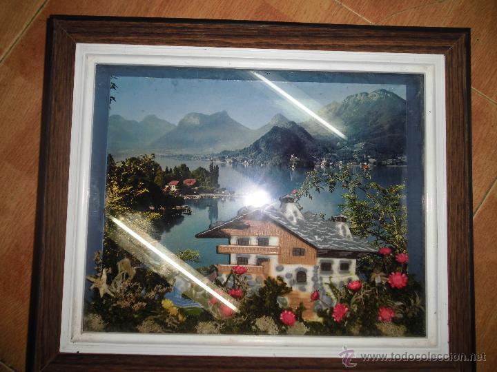 Varios objetos de Arte: ANTIGUO CUADRO VITRINA CON PLANTAS Y CASERON PLASTICO IDEAL RESTAURANT O CASA RURAL - Foto 2 - 53112147