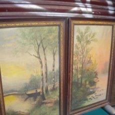 Varios objetos de Arte: BONITA PAREJA DE CUADROS PINTADO A.APARCIO. Lote 54487634