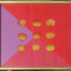 Varios objetos de Arte: HILTON MCCONNICO. FAMOSO DISEÑADOR. ARTE CONCEPTUAL. COMPOSICIÓN NATURALISTA. 32 CM X 32 CM. Lote 57698334