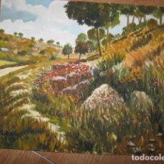 Varios objetos de Arte: ACUARELA ANTIGUA FIRMADA ILEGIBLE. Lote 64131247