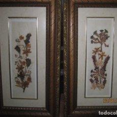 Varios objetos de Arte: PAREJA CUADROS MARCOS DE MADERA Y FLORES NATURALES CON CRISTAL PROTECTOR. Lote 73661391