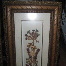 Varios objetos de Arte: CUADRO DE FLORES EN VITRINA REALIZADO CON HOJAS NATURALES SOLO UN CUADRO. Lote 248037450