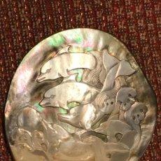 Varios objetos de Arte: PRECIOSA CONCHA GRABADA EN NÁCAR. Lote 83595032
