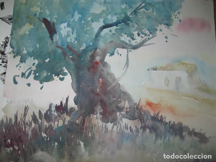 ANTIGUA ACUARELA ORIGINAL FIRMADA A LILLO HERNANDEZ ALICANTE (Arte - Varios Objetos de Arte)