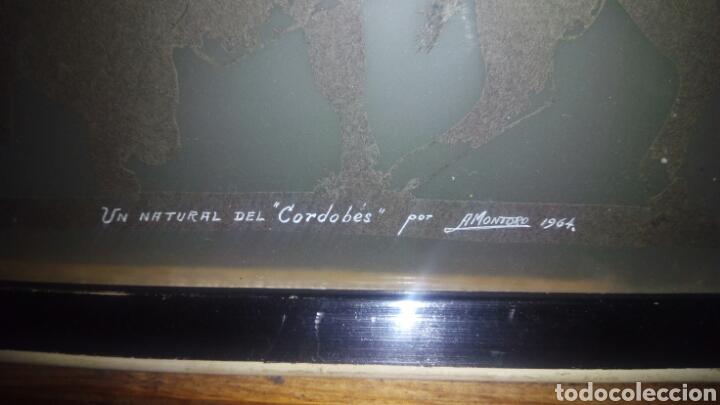 Varios objetos de Arte: Cuadro de el Cordobes por A.Montoro - Foto 8 - 114113656