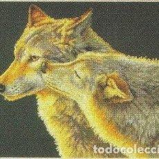 Varios objetos de Arte: LOBOS 2 - CUADRO BORDADO A PUNTO DE CRUZ. Lote 114608399