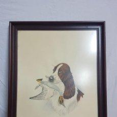 Varios objetos de Arte: CUADRO CON MARCO Y CRISTAL. Lote 127823079