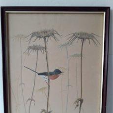 Varios objetos de Arte: PINTURA SOBRE SEDA ENMARCADA CON CRISTAL.. Lote 128638928