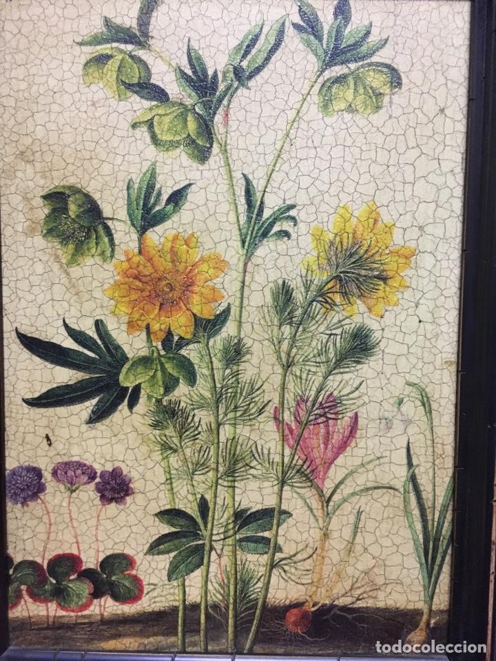 Varios objetos de Arte: Impresión sobre cobre - Foto 2 - 131438781