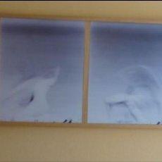 Varios objetos de Arte: ADOLFO MANZANO. SERIE ENMARCADA 4 FOTOGRAFÍAS ORIGINALES. EN EL INTERIOR 1977. Lote 139706574