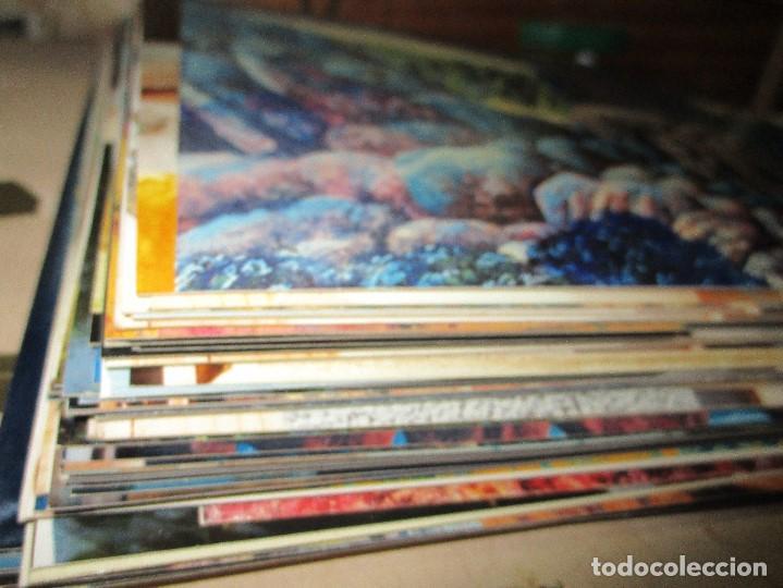 Varios objetos de Arte: ANTONIO FERRIS PINTOR VALENCIA BOCAIRENT LOTE 158 FOTOS ORIGINALES ANTIGUAS DE SU PINTURA - Foto 3 - 146322414