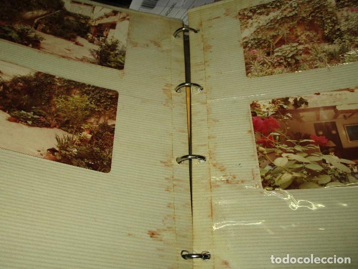 Varios objetos de Arte: ANTIGUO ALBUM 400 FOTOS ORIGINALES INEDITAS PINTOR ANTONIO FERRI PINTURA VALENCIANA ANTIGUA - Foto 3 - 148517746