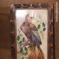 Varios objetos de Arte: AVE PINTADA Y CON PLUMAS NATURALES . Lote 151465722