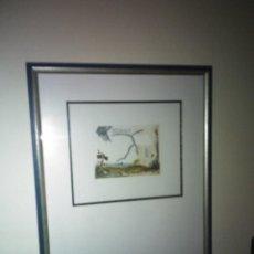 Varios objetos de Arte: PINTURA CUADRO LOTE DE DOS , FIRMADOS Y ENMARCADOS.. Lote 152374462
