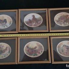 Varios objetos de Arte: 6 MINI CUADROS SERIE COMPLETA PAJAROS, REPRODUCCIONES DE SHARON JERVIS,1979 VER DETALLES Y FOTOS. Lote 175538907