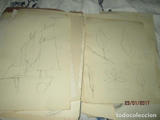 Varios objetos de Arte: ANTIGUA CARPETA CON 65 DIBUJOS ANTIGUA ACADEMIA O TALLER DE ARTE escuela trabajo de ALICANTE - Foto 9 - 176645809
