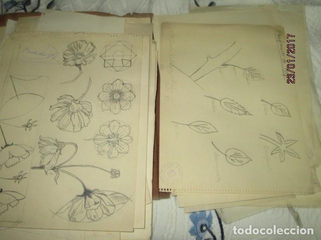 Varios objetos de Arte: ANTIGUA CARPETA CON 65 DIBUJOS ANTIGUA ACADEMIA O TALLER DE ARTE escuela trabajo de ALICANTE - Foto 12 - 176645809