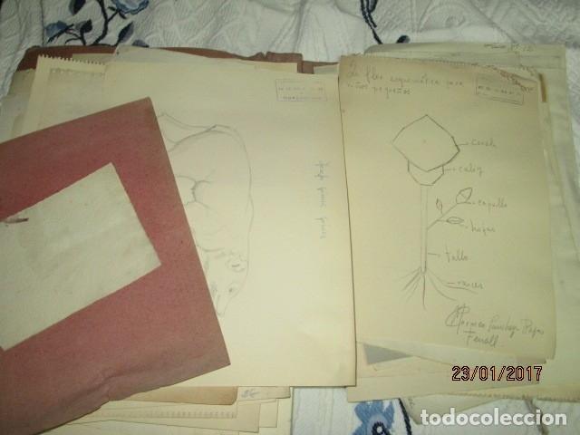 Varios objetos de Arte: ANTIGUA CARPETA CON 65 DIBUJOS ANTIGUA ACADEMIA O TALLER DE ARTE escuela trabajo de ALICANTE - Foto 16 - 176645809