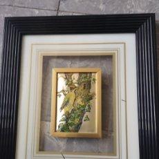 Varios objetos de Arte: DECORATIVO CUADRO, AVES, RELIEVE CON MARCO DE CRISTAL. ENMARCADO. 38X44CM. Lote 178283865