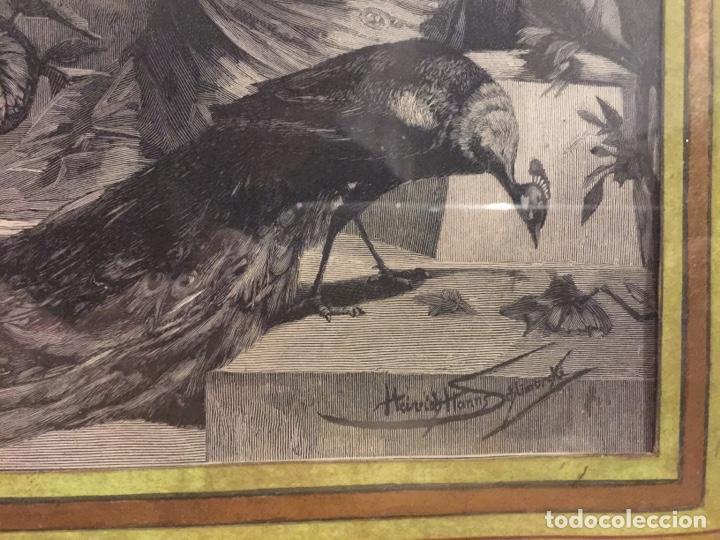 Varios objetos de Arte: Espectacular reproducción de F.Feldweg impreso ilegible 73cm X 54cm - Foto 5 - 180277212