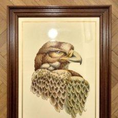 Varios objetos de Arte: CABEZA DE AGUILA LACADO SOBRE MADERA PROCEDENTE DE LUCENA (CORDOBA) 80 X 55 CM (APROX). Lote 182169285