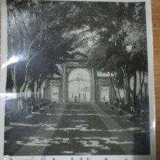 Varios objetos de Arte: PEREZ GIL PINTOR MANUSCRITO MINISTERIO EDUCACION ANTIGUA FOTO FIRMADA OBRA PREMIADA ALICANTE. Lote 190510466