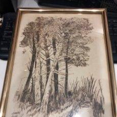 Varios objetos de Arte: CARBONCILLO. Lote 193434461
