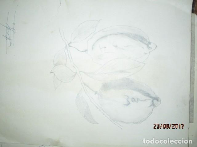 Varios objetos de Arte: ANTIGUA CARPETA CON 65 DIBUJOS ANTIGUA ACADEMIA O TALLER DE ARTE escuela trabajo de ALICANTE - Foto 42 - 176645809
