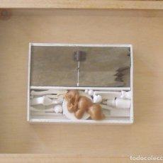 Varios objetos de Arte: RICARD JORDÀ. INSTALACIÓN CON TÉCNICA MIXTA. 2011. FORMATO CAJA CON CRISTAL. 42X37X7 CM. BUEN ESTADO. Lote 203993321