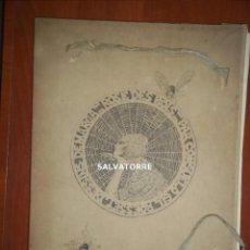 Varios objetos de Arte: CONSUELO GIL ROESSET. MARGA GIL ROESSET. ROSE DES BOIS.1923. PLON.. Lote 206595423