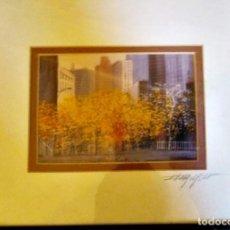 Varios objetos de Arte: ARBOLES EN NUEVA YORK. Lote 214808488
